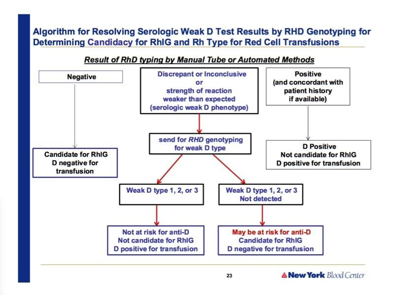 Westhoff slide 4-RhD algorithm