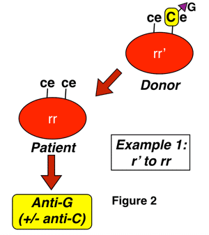 G formation 1
