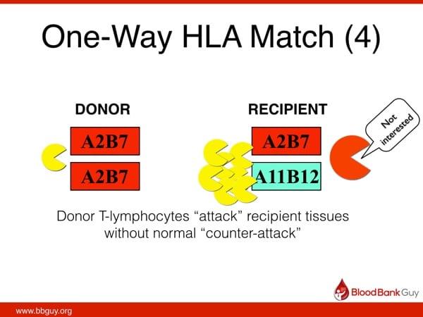 One-way HLA match (4)