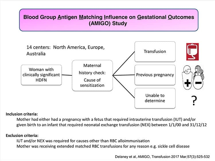 Slide 2 - Outline of the AMIGO Study