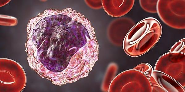 093CE monocyte mononuclear assay
